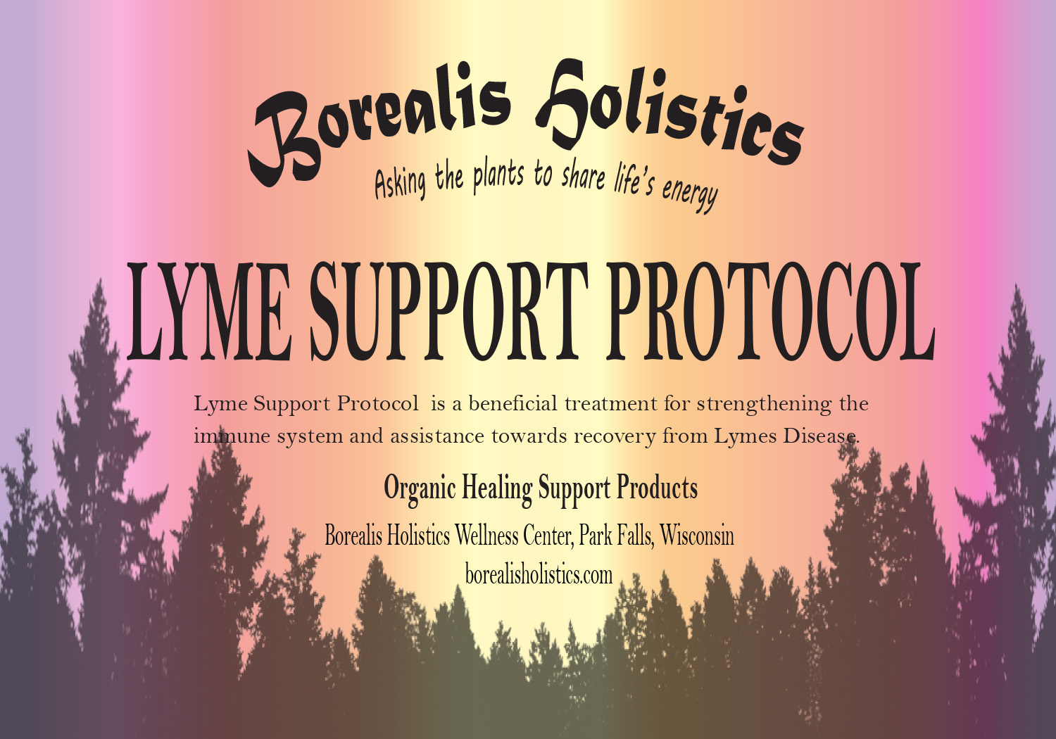 Lyme Support Protocol